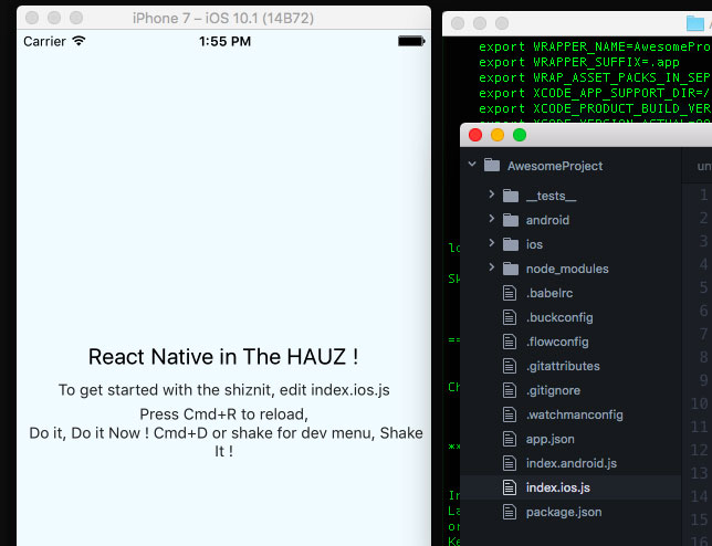 React-Native Setup
